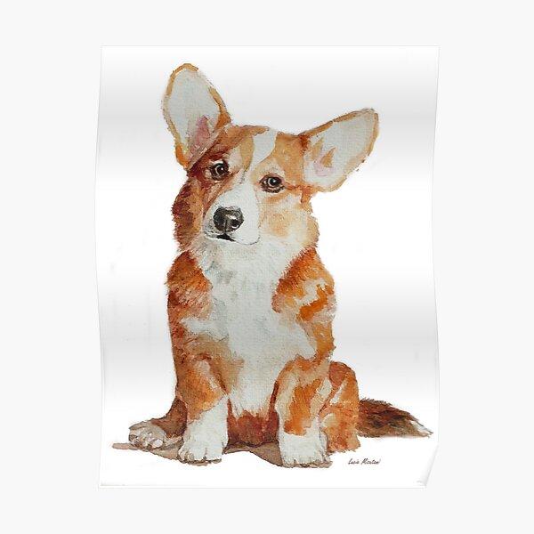 Cute Corgi little puppy Poster