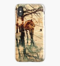 Rustic Turquoise-Orange Wood Texture - Horse iPhone Case/Skin