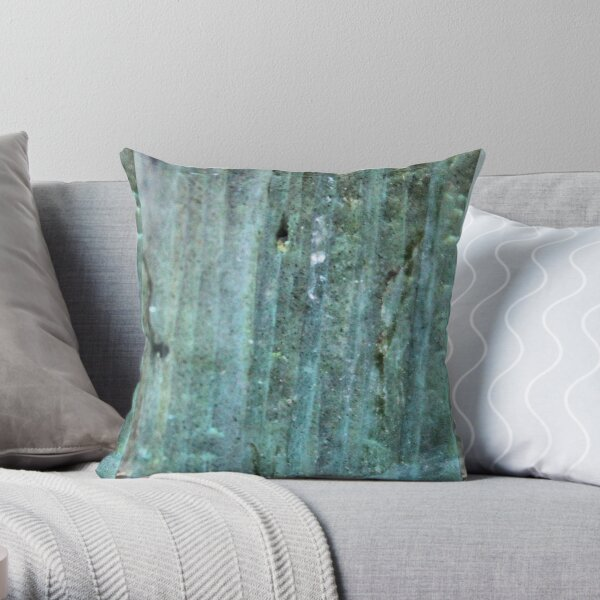 Labradorite Throw Pillow