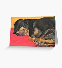 Black and Tan Coonhound Napping Greeting Card