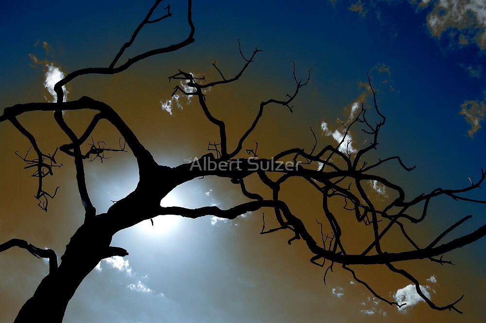 ''The Dead Tree' by Albert Sulzer