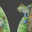 Red Eyed Frogs by Bianca Stanton