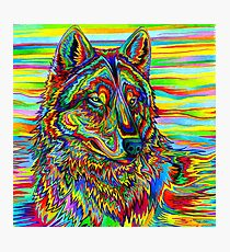 Colorful Psychedelic Rainbow Wolf Photographic Print
