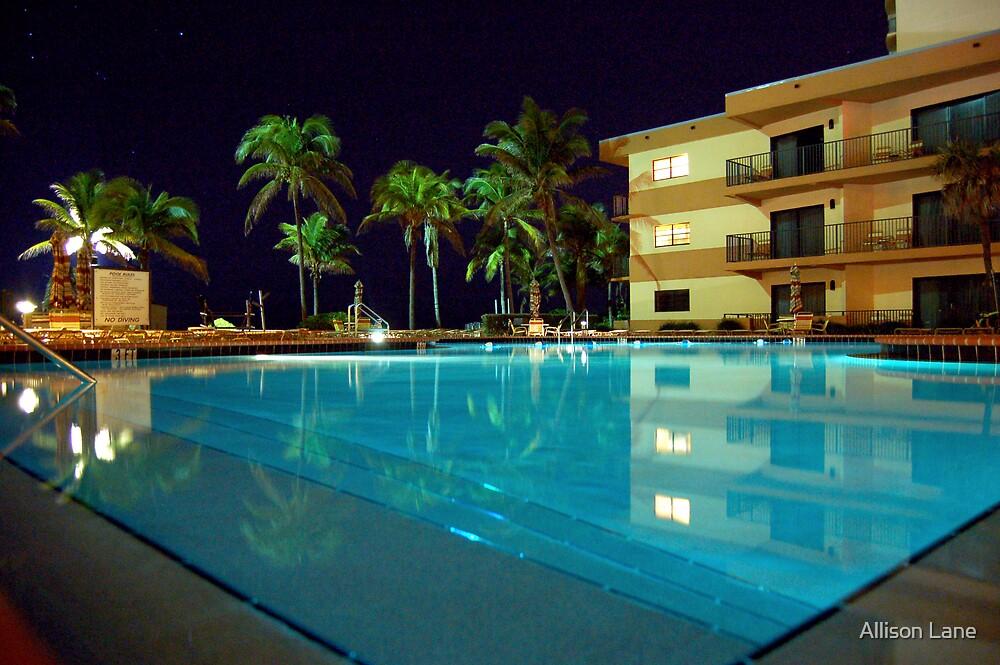 Florida Nights by Allison Lane
