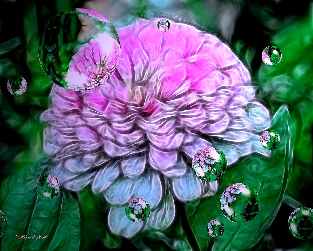 Pink Perfection by Pat Moore