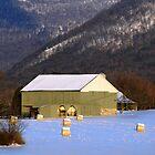Green Barn by Cassy Greenawalt