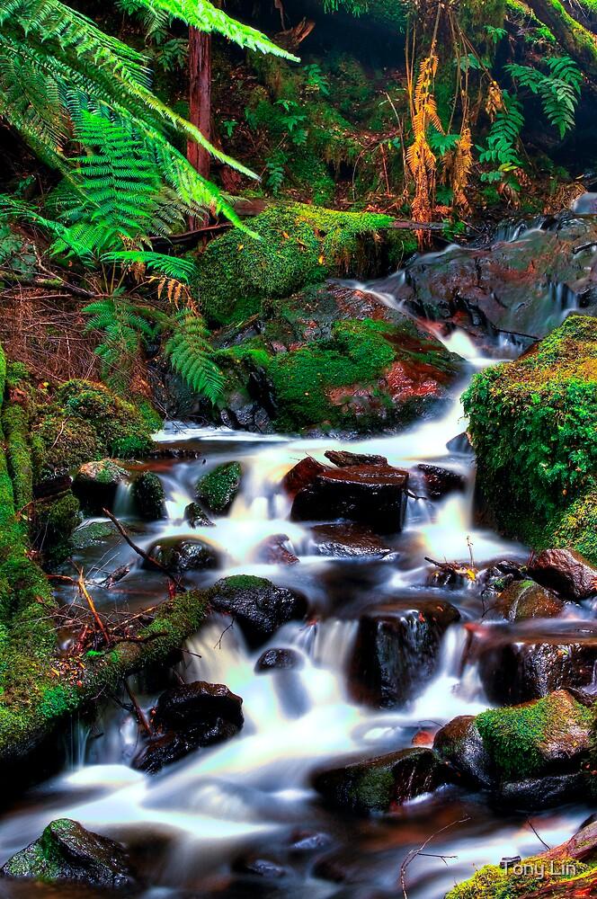 Cora Lynne Falls Cascades HDRi by Tony Lin
