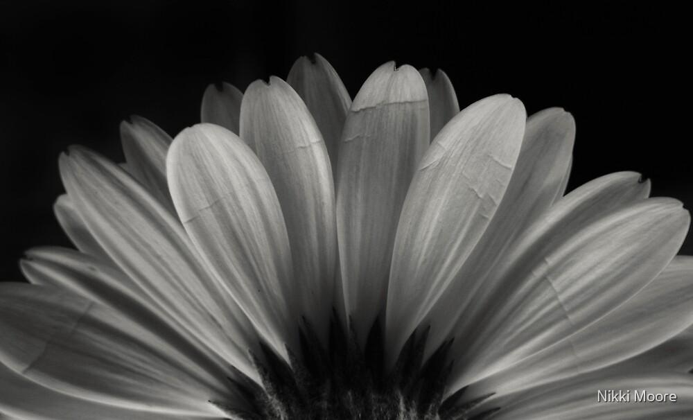 Enlightenment by Nikki Moore