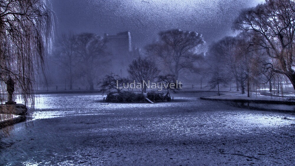 Snow in Boston Garden by LudaNayvelt