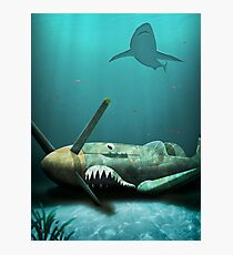 Two Sharks Photographic Print