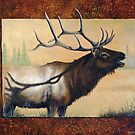 Wapiti by Rich Summers