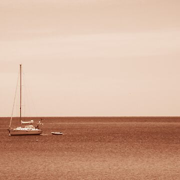 sail by katiesykes