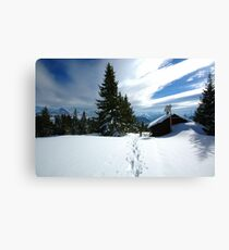 Snowshoeing  Canvas Print