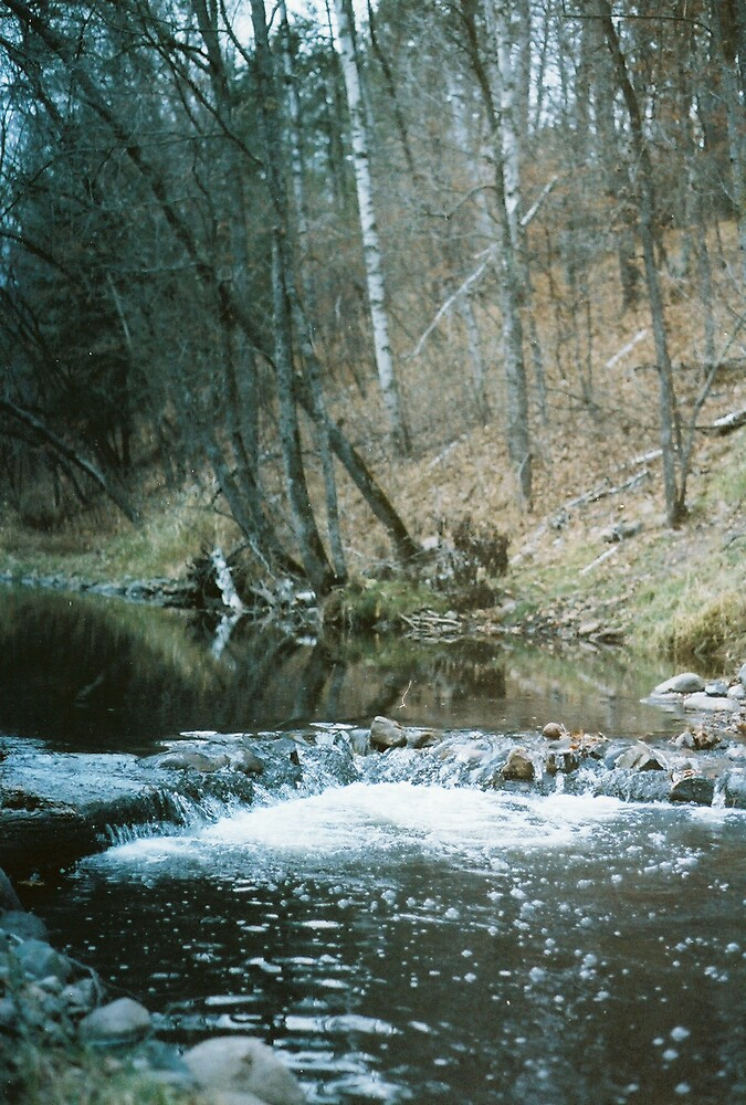 pretty stream in mn by Mark Mcdonough