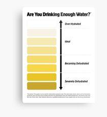 Urine Color Chart, Pee Color Chart Metal Print