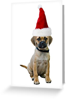 Puggle Christmas by CafePretzel