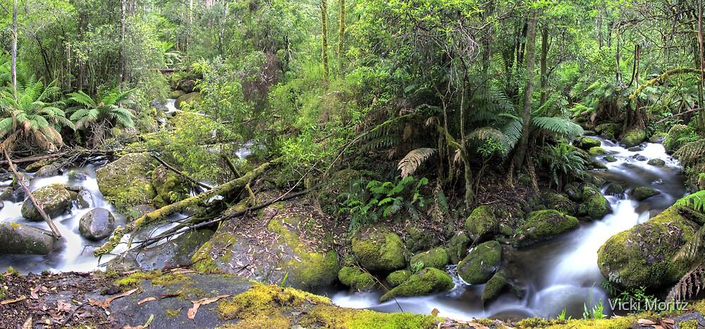 Taggerty River convergence- panorama by Vicki Moritz