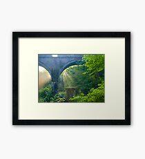 Sunbeams at Plymbridge Woods Framed Print