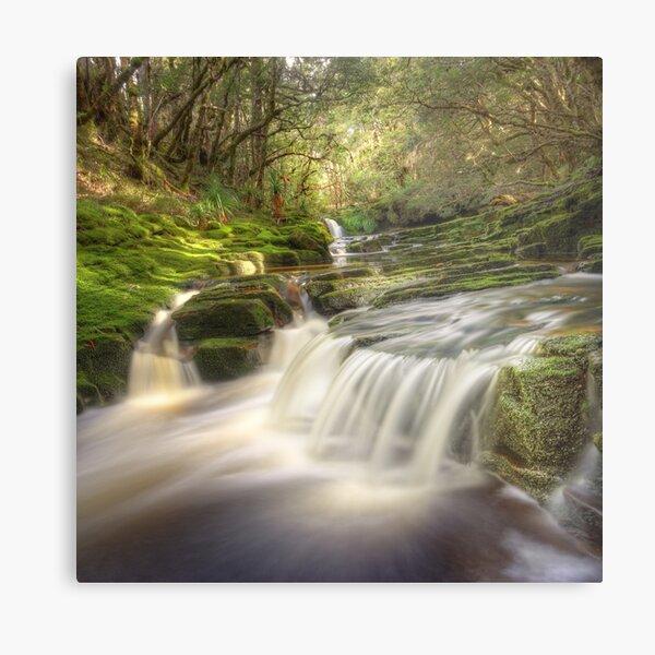 Highland cascades, Tasmania Metal Print