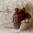 Carmelina by Bill and Sarah Wedding Photography