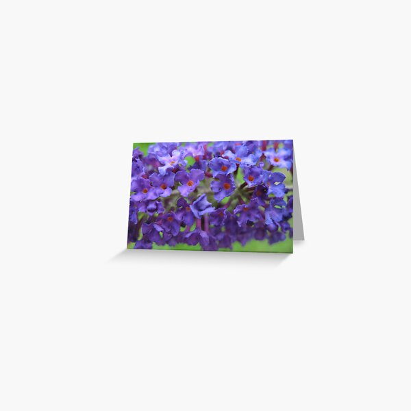 Blue Cluster Greeting Card