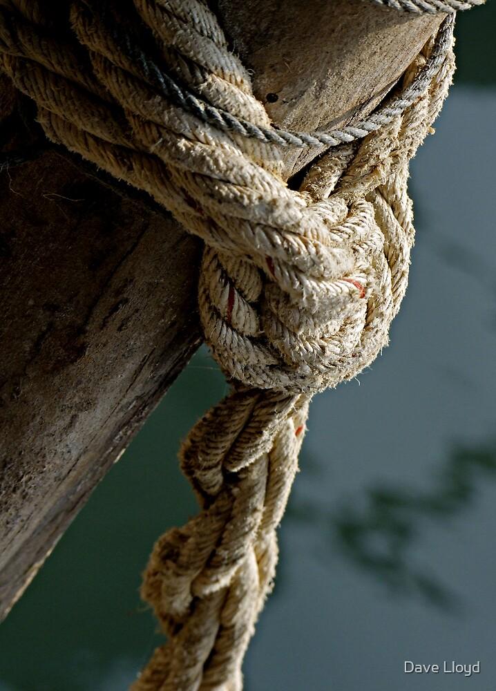 Gone Knotty 15 by Dave Lloyd