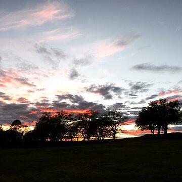 Chico, California: End of the Day by DarkSkittyPower