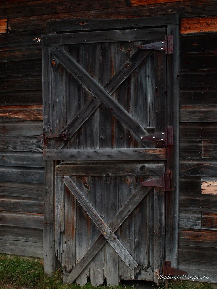 The Door by babyangel