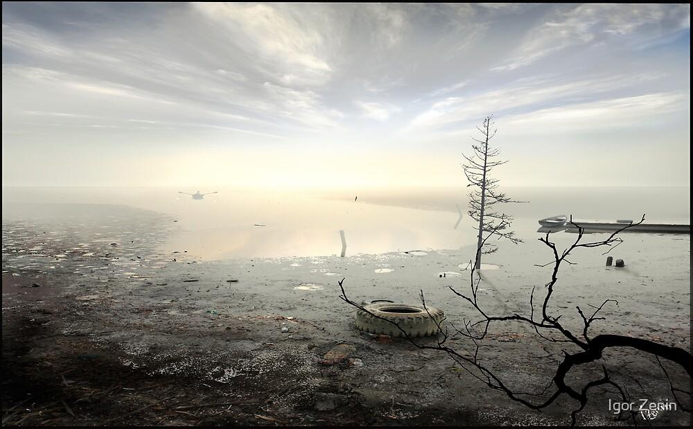 Remnants of the Past by Igor Zenin