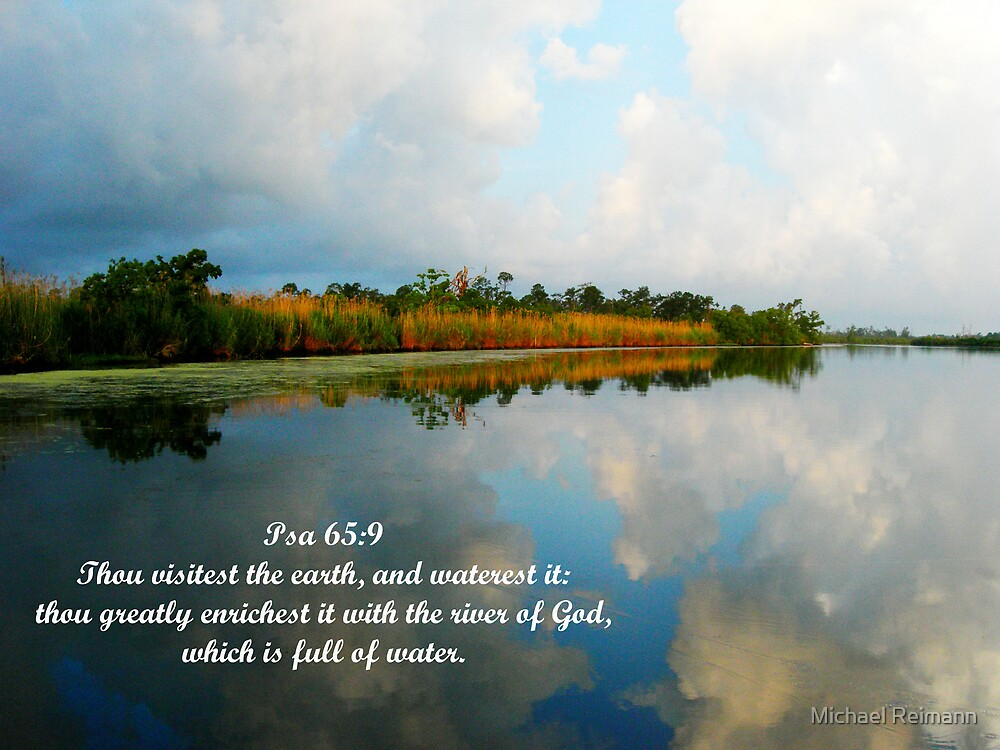 Psalm 65:9 by Michael Reimann