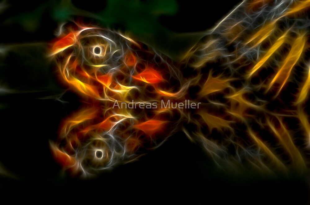 Eastern Box Turtle Fractal by Andreas Mueller