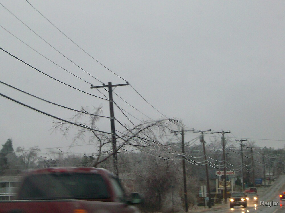 Ice Storm 2008 by Naylor