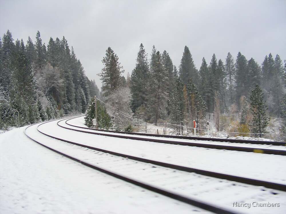 Snow Covered Tracks by NancyC
