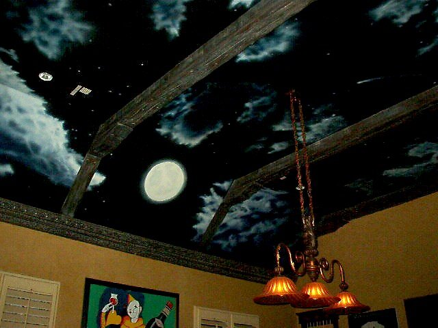 MURAL night sky scene by mmdstudios