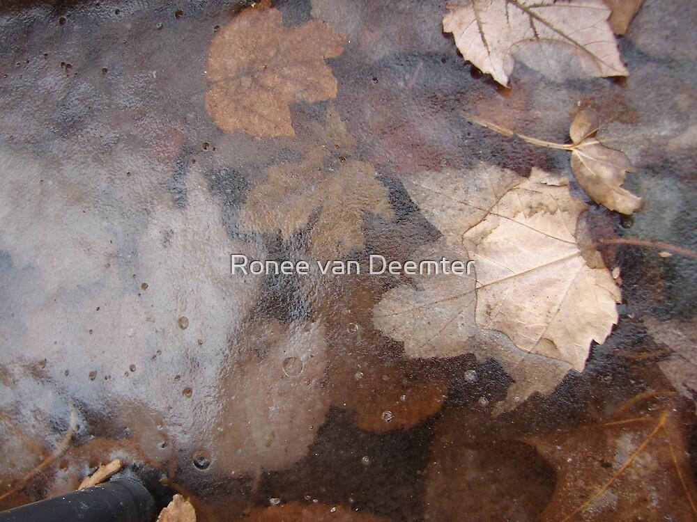 Decayed autumn frozen by Ronee van Deemter