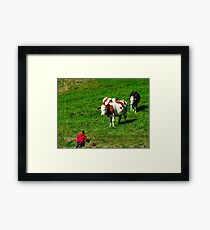 Little girl wanting to play with brown cowson the hill, autumn saunny day Framed Print