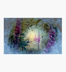 The Celestial  Winter to  Eternal  Spring      Photographic Print