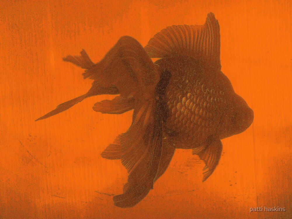 The Golden Fish by patti haskins