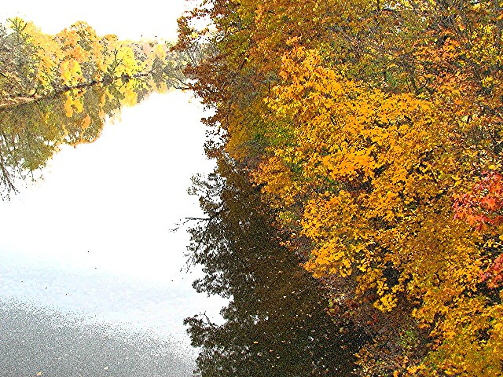 Perkiomen Fall View #1. by drumsandkeys