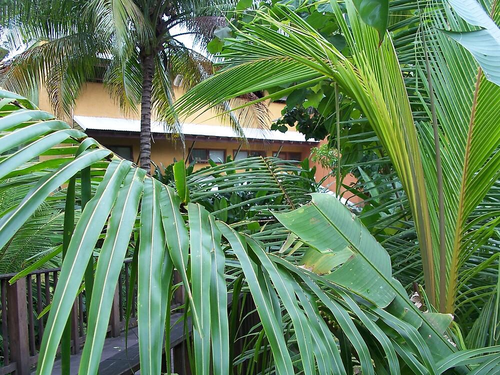 Jamaica Palms by hunter22375