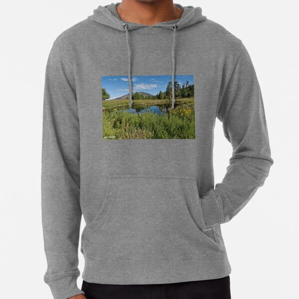 Mountains Reflected in a Pond Lightweight Hoodie