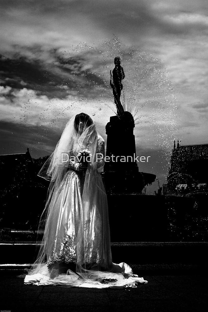 The bride part 1 by David Petranker