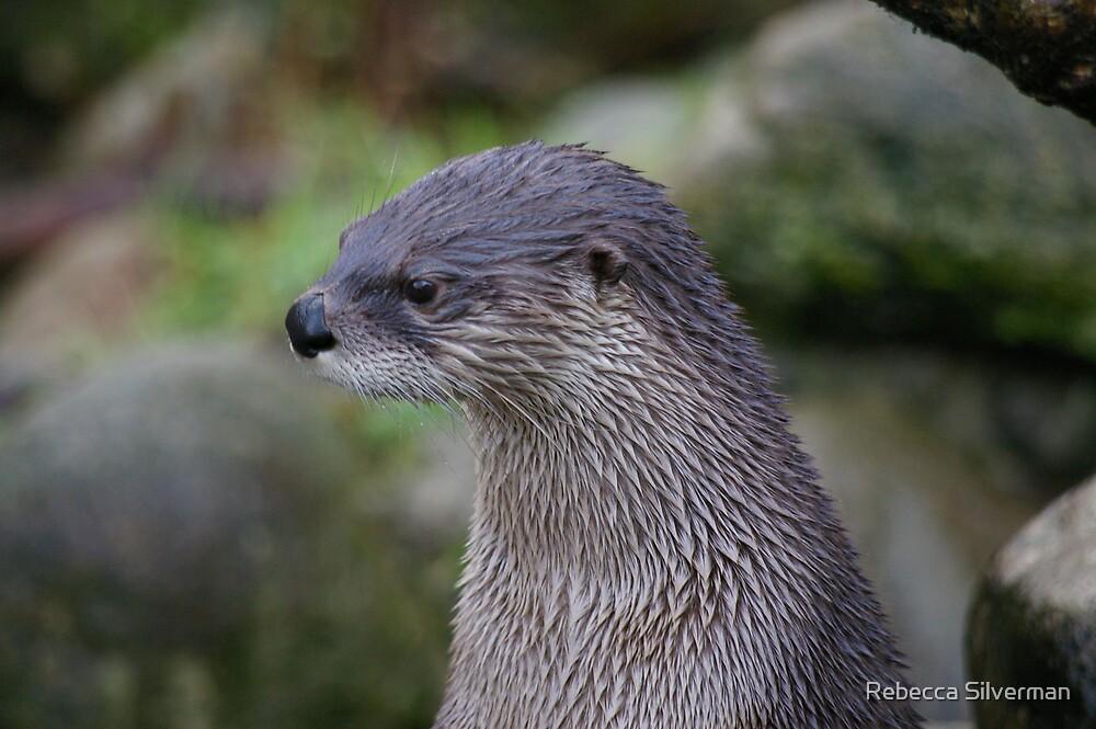 Portrait of an Otter by Rebecca Silverman