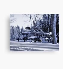 Bitter Cold Blue Canvas Print