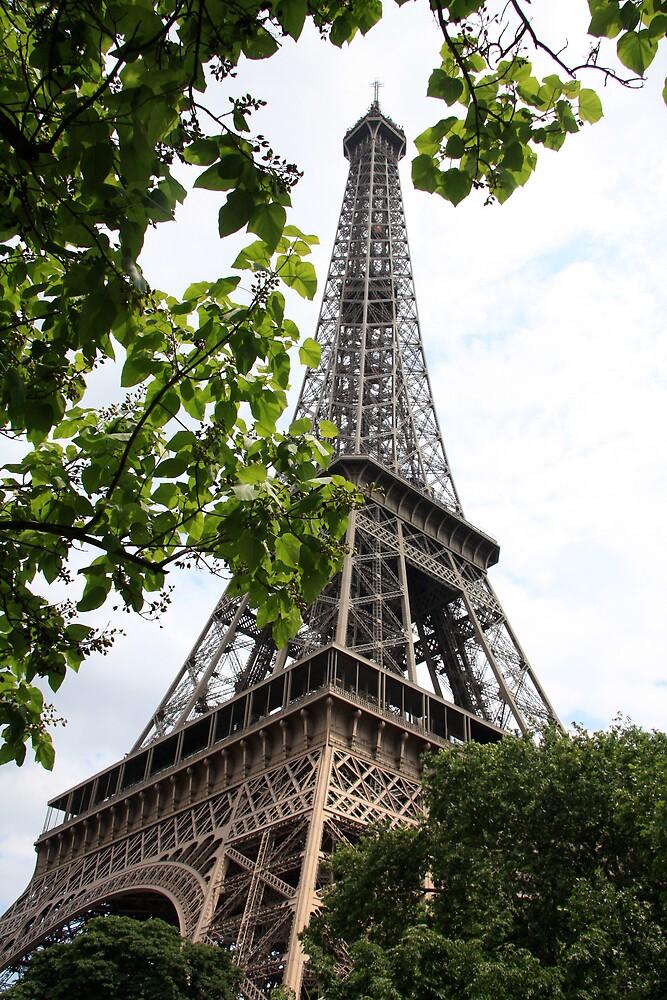 Eiffel Tower in July by stjc