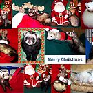 A Very Ferret Christmas  by Glenna Walker