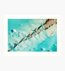 Great Exuma Island, The Bahamas Art Print