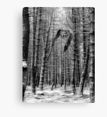 Great gray Owl in the snowy woods Canvas Print