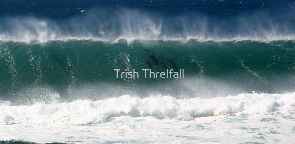 family swim by Trish Threlfall