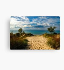 Indiana Dunes, Lake Michigan  Canvas Print